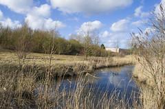 Le Filet Morand (alain-grossemy) Tags: paysage landscape rivière river evinmalmaison hautsdefrance france