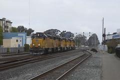 Back to Armour Yellow (imartin92) Tags: berkeley california unionpacific railroad railway freight train emd gp402 gp40m2 gp60 locomotive