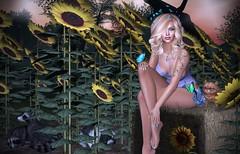 All Flowers In Time Bend Towards The Sun (lauragenia.viper) Tags: 68main bento chloe elleboutique imageessentials izzies jesuis jian justanimals kaerri lelutka maitreya noname persefona secondlife secondlifefashion sntch twe12ve ysys blond blonde avatar virtual cgi sexy polish miniskirt tank curls animals racoon rabbit bunny pet kitten cat haystack sunflower flower butterfly outdoor portrait laurageniaviper secondlifemodel secondlifeblogger bodyart tattoo ink hairaccessory