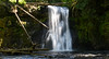 Upper North Falls (maytag97) Tags: creek north upper falls silver pacific northwest nature green oregon water landscape pool outdoor park forest trees summer wilderness stream state waterfall cascade river hiking woods pnw beautiful fresh environment maytag97 nikon d750