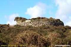 2018-05-12 RosewallHill.015 (Rock On Tom) Tags: phillack hayle rosewallhill stives walk beach coastpath