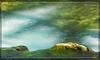 Αράπιτσα, Άγιος Νικόλαος, Νάουσα, γάργαρα νερά !!! (Spiros Tsoukias) Tags: hellas μακεδονία macedonia αράπιτσα άγιοσνικόλαοσ νάουσα ελλάδα δάση ποτάμια φύση πλατάνια βελανιδιέσ νερά ουρανόσ λουλούδια greece forests rivers nature planetrees oaks water sky flowers grece forets rivieres platanes chenes eau ciel fleurs griechenland walder flusse natur platanen eichen wasser himmel blumen grecia bosques rios naturaleza platanos robles agua cielo flores yunanistan ormanlar nehirler doga cnaragaclar mese su gok cicekler longexposure
