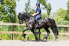 Feija & Renate (winniefotografie) Tags: friesian horse blackhorse fairytale sport dressage knhs kfps laurena holland canon sporthorse dressagehorse pony fries
