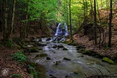 Josephstahler Wasserfall (Flokroe) Tags: river water wasser wasserfall natur nature outdoor dreusen grün drausen schliersee münchen munich germany deutschland