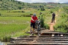 Frequent challenge for residents and riders. #CycleMadagascar #MTB #mountainbike #challenge #BikeHoliday #BikeExperience #bikeride #bicyclelicious #culinary #culinaire #bikelife #rideyourbike #Madagascar #rock_machine #stevens #cube #RockShox #Suntour (klaus.a.sperling) Tags: bikeexperience bikeride mtb rideyourbike culinary bikelife bicyclelicious mountainbike bikeholiday suntour challenge cyclemadagascar stevens rockshox cube rockmachine culinaire madagascar