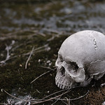 Skull Grave thumbnail