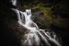 Convergence (PrevailingConditions) Tags: water waterfall cataractfalls ca california bay bayarea landscape rocks moss