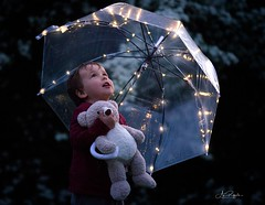 looking for Wonders (agirygula) Tags: kids childhood family evening night lights led umbrella teddy bear wonder wonderful magical fun funnydays