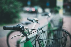 Green_ #43/100 Bike Project (pierfrancescacasadio) Tags: bike maggio2018 bicycle 100bicycles project detailed details bikes cycling 100bicyclesproject 15052018840a6954 green basketcase 50mm bokeh shimano