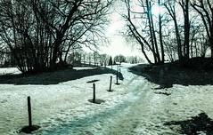 Combloux lomography turquoise 02 2018023 (Patrick.Raymond (5M views)) Tags: alpes haute savoie megeve comloux montagne neige froid gel bois arbre foret argentique nikon lomography turquoise