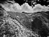 half way to the highest mountain (3952m) of Taiwan (bamboolizer) Tags: alpa12tc schneider35mmf56apodigitar phaseoneiq260 bw blackandwhite monochrome mountain 玉山 cpl