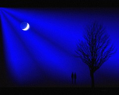 Two .. (Julie Greg) Tags: moon nature tree texture canon5dmarkiv colours blue