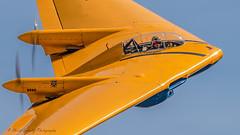 1943 Northrop N9MB Flying Wing (dschultz742) Tags: 05042018 airplane d810 pof planesoffame aircraft nikon nikonsigma outdoor vehicle northrupflyingwing 9mb northropn9m davidvopat