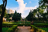 URBAN NATURE (cristhian carvalho) Tags: nature belohorizonte minasgerais mg brazil dog cachorro brasil natureza park green parque