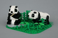 Pandas (-soccerkid6) Tags: lego panda bear model creation animal wildlife design landscape bamboo rock