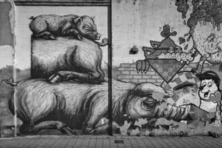 Streetart Gent (ROA)  (in explore Mai 2018)
