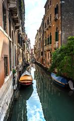 Venice Canal (William MacGregor) Tags: canal venice water boat gondola europe european italian venezia italy outdoor yourbestoftoday twop twtp travel lumix macgregorwilliam vacation ngc damncool