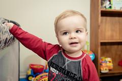 Will - 14 months Old (Katherine Ridgley) Tags: toronto torontobaby torontotoddler baby babyboy babyfashion cutebaby toddler toddlerboy toddlerfashion cutetoddler toys child children kid kids family portrait indoor