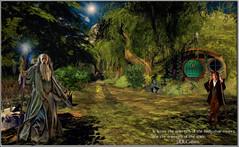 written spirit (sw2018 (Alt_images)) Tags: lotr gandalf hobbit shire gollum bilbo art texture