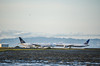 united for star alliance (pbo31) Tags: bayarea california nikon d810 color may 2018 spring boury pbo31 sanfranciscointernational sfo sanmateocounty millbrae airport airline aviation travel plane united taxi departure arrival landing runway boeing pair passing 777