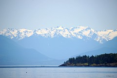 Snow Peaks (CanMan90) Tags: olympicmountains washingtonstate usa esquimalt lagoon victoria britishcolumbia canada mothersday sunshine may 13th 2018 cans2s canon rebelt3i efs55250mmf456isstm plcir ocean