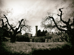 Two Crooked Trees (Feldore) Tags: florence fiesole tower campanile spooky twisted crooked sepia italy italian feldore mchugh em1 olympus 1240mm moody landscape sinister roman