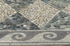 Dionysus (Dionysos) House, Pebble Mosaic, Atrium, Pella  (3).JPG (tobeytravels) Tags: alexanerthegreat alexander3rd philip11 macedon macedonia herodotusofhalicarnassus xerxes thucydides archelaus amyntas zeuxis timotheusofmiletus roman egnatia colony hippodamian phacos