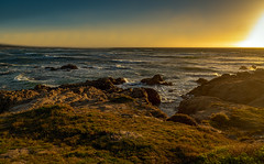 Asilomar State Beach (Thanks for 1.5 million views) Tags: kando asilomar