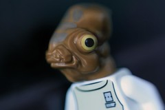 The Admiral (CozzD) Tags: admiral ackbar star wars lego return jedi rotj home one calamari mini figure minifig