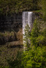 Webster fall, Hamilton (iuriandrei) Tags: beauty nature blurred motion day environment flowing water forest land long exposure people nonurban scene outdoors plant power rainforest scenics travel destinations tree waterfall