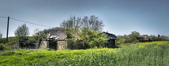 Forgotten Farm (nigdawphotography) Tags: farm barn barns derelict arable rapeseed littlecanfield essex