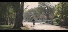 散歩する (Pornthep Pongpiboonphol) Tags: rain alone lonely portrait cinematic movie scene street streetphotography streetphoto dramatic candid snapshot behindthescene still film canon filmstill moviestill contrast art shadow