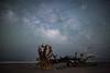 A shooting star (Robert Loe) Tags: milkyway shootingstar water ocean sea space night photography lowlevellighting island sand shore tree driftwood