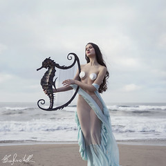 Ondina (Elis's ☾) Tags: sand meramid sirena siren nymph ninfa light 2470mm canon5dmark3 sea ocean dress tail coda skin pelle shell conchiglie girl nature natura ragazza woman donna velo cetra zither musica music suonare play seahorse undine ondina waves onde beautiful beauty magic magia fairy fairytale faerie fantasy fantasia fantastique fable fiaba favola story tale racconto painting dipinto portrait ritratto portraiture ritrattistica fineart art arte artistic elisascascitelli bellezza vintage square photoshop adobe mythology folklore marine melody portfolio
