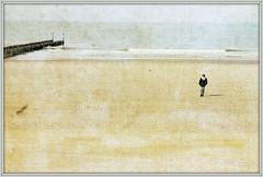 Mer du Nord et plage, Dombourg, Walcheren, Zeelande, Nederland (claude lina) Tags: claudelina nederland paysbas hollande zeeland zélande dombourg plage beach mer sea merdunord noordzee dunes
