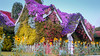 Beautiful flower houses in purple and yellow colors (w.abutabikh) Tags: ancient architecture building bungalow city construction country covering culture dwelling east estate exterior fence frame garden grass history home house hut landscape old oriental outdoor palace picketfence protectivecovering religion religious residence roof shrine sky stone structure summer sunny temple tourism traditional travel tree trees tropical vacation village wood wooden