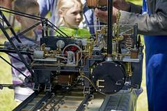Märkisches Dampfspektakel 2018 (micharl_foto) Tags: dampfmaschine steamengine traktor lokomotive modellbau