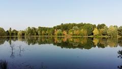 Natura riflessa (viola.v94) Tags: reflexes water rfilessi natura green tree landscape panoramic countryside peaceful samsung