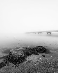 The Getaway (mikeyatswb) Tags: claibornepellbridge newportbridge bridge rock seaweed water ocean still fog foggy sand blackandwhite bw monochrome longexposure leefilters