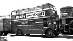 London transport RT1243and RTL1364  (MXX87) . (Ledlon89) Tags: rtbus rt aecregent lt lte londontransport bus buses londonbus londonbuses vintagebus vintagebuses 1960s parkroyal oldbuses