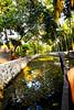 Alleppey: Backwaters (deepgoswami) Tags: india kerala alleppey backwaters