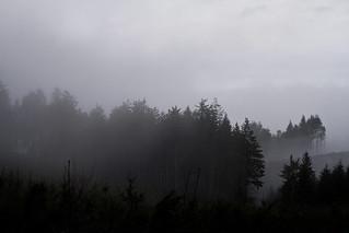 paysage de janvier en mai