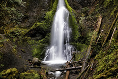 Marymere Falls (erichudson78) Tags: usa washington marymerefalls chutedeau waterfall longexposure poselongue grandangle wideangle canoneos6d canonef24105mmf4lisusm olympicnationalpark cascade eau water forêt forest paysage landscape 7dwf tree arbre