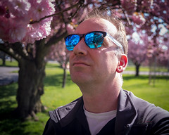 Closer inspection (_Matt_T_) Tags: smcpf28mmf28 sakura spring cherry niagarafalls niagaraparks blossoms selfie sunglassess niagaraonthelake ontario canada ca
