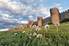 Dientes de Leon,en la ciudad de Ávila (Tomás Martín.) Tags: avila muralla medieval dientedeleon green nubes ciudadamurallada explore atardecer