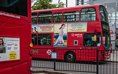 Arriva London (PhredKH) Tags: canonphotography fredkh photosbyphredkh phredkh splendid woodgreen northlondon london city cityoflondon cityview buses red redbuses road fredknoxhooke 50mm ef50mmf18stm citysnap streetsoflondon