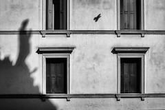 Padova Teatro Verdi 2018 (Luca * Rossi) Tags: lucaxrossi padova street streetphotography streetbw streetphoto streetphotographers