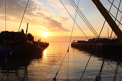 Light (NovemberAlex) Tags: colour sunset seaside kent silhouette water whitstable