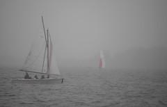 TeaCH. (WaRMoezenierr.) Tags: teach learning sailing zeilen zeilboot veerse meer zeeland holanda netherlands nederland mist fog color red lake niebla velero lago rood rojo grey grijs gris
