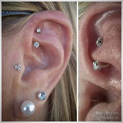 "rook tragus • <a style=""font-size:0.8em;"" href=""http://www.flickr.com/photos/122258963@N04/26812097587/"" target=""_blank"">View on Flickr</a>"